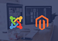 compare Joomla and magento