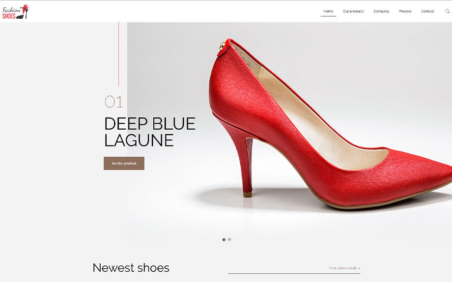 fashion wordpress website development